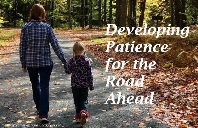 Developing Patience for the Road Ahead