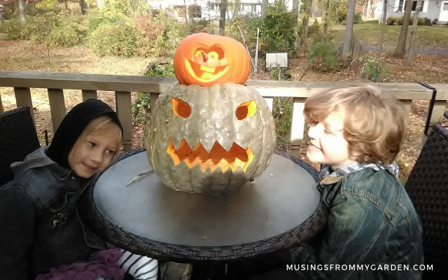 kids with jarrahdale pumpkin
