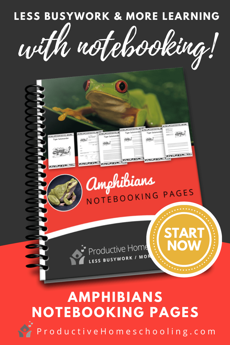 amphibians, notebooking, free homeschooling resources